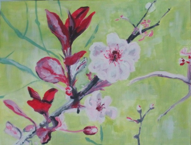 Spring Flowers, Cherry Blossoms