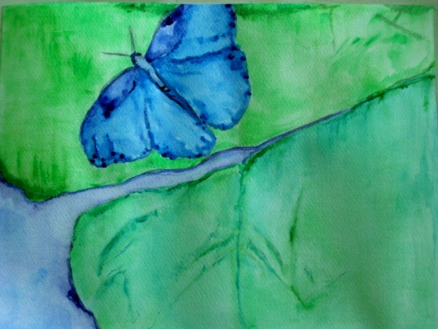 Easy Watercolor Paintings Of Butterflies This butterfly watercolor